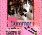 Summer und Schnecki