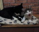 Fabian und Bonny